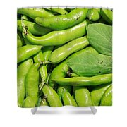 Fava Bean Pods Shower Curtain