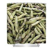 Fava Beans Shower Curtain