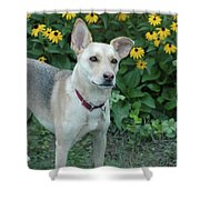 Fawn And The Flowers Shower Curtain