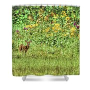Fawn In Flowers Shower Curtain