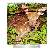 Fawn In The Forest - Inspirational - Religious Shower Curtain