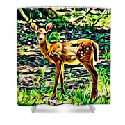 Fawn In The Woods Shower Curtain