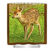 Fawn Poster Image Shower Curtain