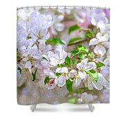 Feast Of Life 23 - Spring Wreath Shower Curtain