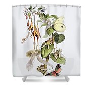 Feasting And Fun Among The Fuschias Shower Curtain