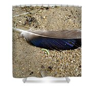 Feather And Inchworm Shower Curtain