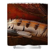 Feather And Leather Shower Curtain