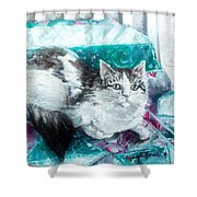 Feather Belle Shower Curtain