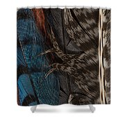 Feather Collection Shower Curtain