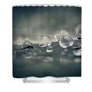 Feather Doplets Shower Curtain