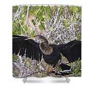 Feather Drying Shower Curtain