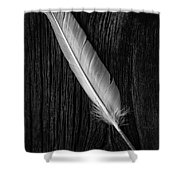 Feather Shower Curtain