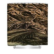 Feather Ice 2 Shower Curtain