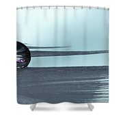 Feather Jewel Shower Curtain
