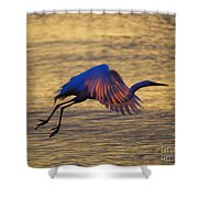 Feather-light Shower Curtain