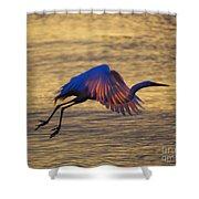 Feather-light Shower Curtain