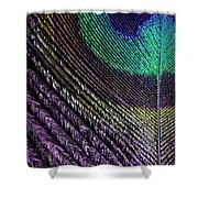 Feather Of A Different Color Shower Curtain