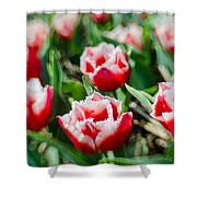 Feather Red Shower Curtain