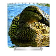 Feathered Female Shower Curtain