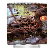 Feathers In Autumn Shower Curtain