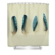 Feathers No1 Shower Curtain