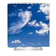 Feathertail Cloud Shower Curtain