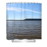 Feathery Shower Curtain