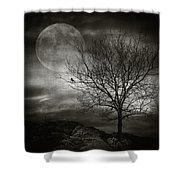 February Tree Shower Curtain