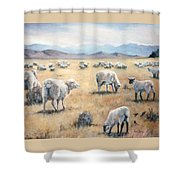 Feed My Sheep Shower Curtain