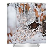 Feeding Site In The Forest In Winter  Shower Curtain