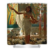 Feeding The Sacred Ibis In The Halls Of Karnac Shower Curtain