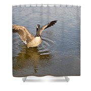 Feel Of Freedom Shower Curtain