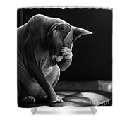 Feeling Your Pain Shower Curtain