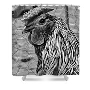 Felicia's Raving Rooster Shower Curtain