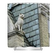Feline Sentry Shower Curtain