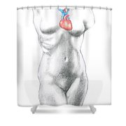 Female Anatomy Heart Shower Curtain