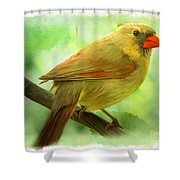Female Cardinal In Elm Tree - Digital Paint Shower Curtain