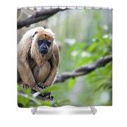 Female Howler Monkey Shower Curtain