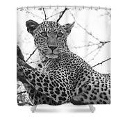 Female Leopard Shower Curtain