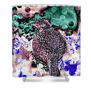 Female Pheasant Abstract Shower Curtain
