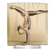 Female Skeletal System Shower Curtain