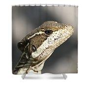 Female Striped Basilisk Shower Curtain