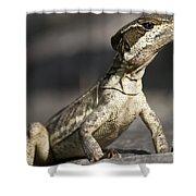 Female Striped Lizard Shower Curtain