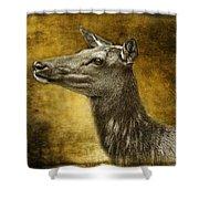 Female Yellowstone Elk Shower Curtain
