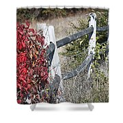 Fence And Creeper Shower Curtain