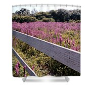 Fence And Purple Wild Flowers Shower Curtain