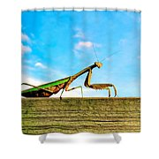 Fence Creeping Shower Curtain