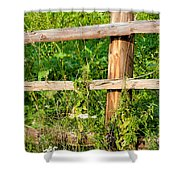 Fence Detail Shower Curtain