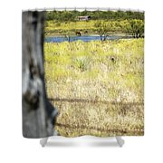 Fence Pasture Horse 14419 Shower Curtain