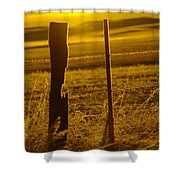Fence Post In The Morning Light Shower Curtain